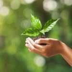 Bioheat®–an Alternative Energy Source in Massachusetts